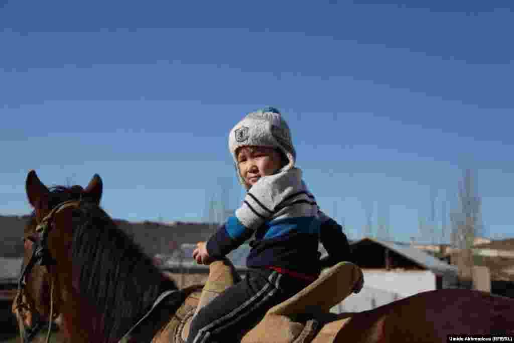 Толеген Жураев держит во дворе домашний скот, лошадей. Мальчик верхом на лошади - Жакия, внук аксакала от старшего сына.