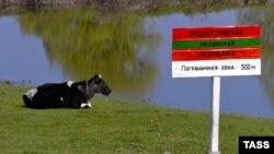 La granița Transnistriei.