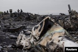 The wreckage of MH17 near the village of Hrabove in Ukraine's eastern Donetsk region.
