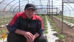 Аграрії Криму залежать від поромної переправи