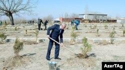 Naxçıvan. Vasif Talibov iməclikdə, 25 Mart 2017