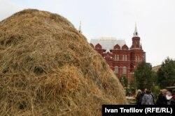 Стог натурального сена перед зданием Исторического музея
