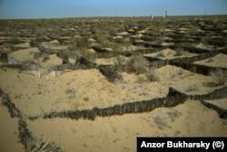 Заборы для сдерживания песка вдоль шоссе между Бухарой и Хивой