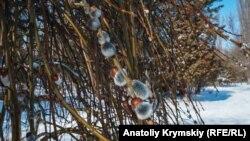 Зима в Крыму, иллюстрационное фото