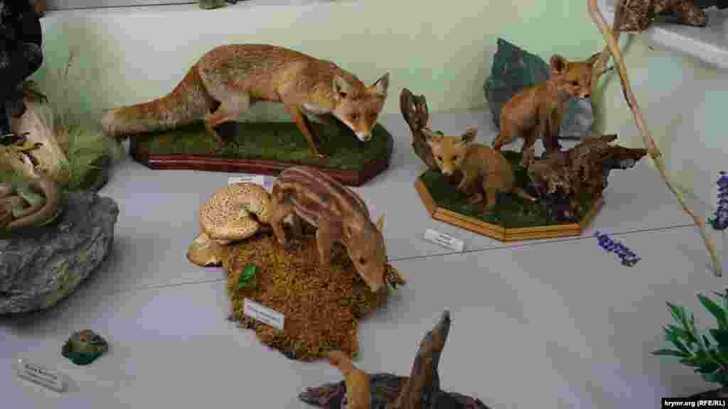 Більшість експонатів музею – це роботи співробітника заповідника, таксидерміста (фахівця з виготовлення опудал тварин) Олега Співакова