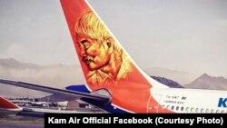شرکت هوایی خصوصی کامایر به پاس خدمات داکتر ناکامورا عکس او را در یکی از طیاره هایش نصب کرده است.