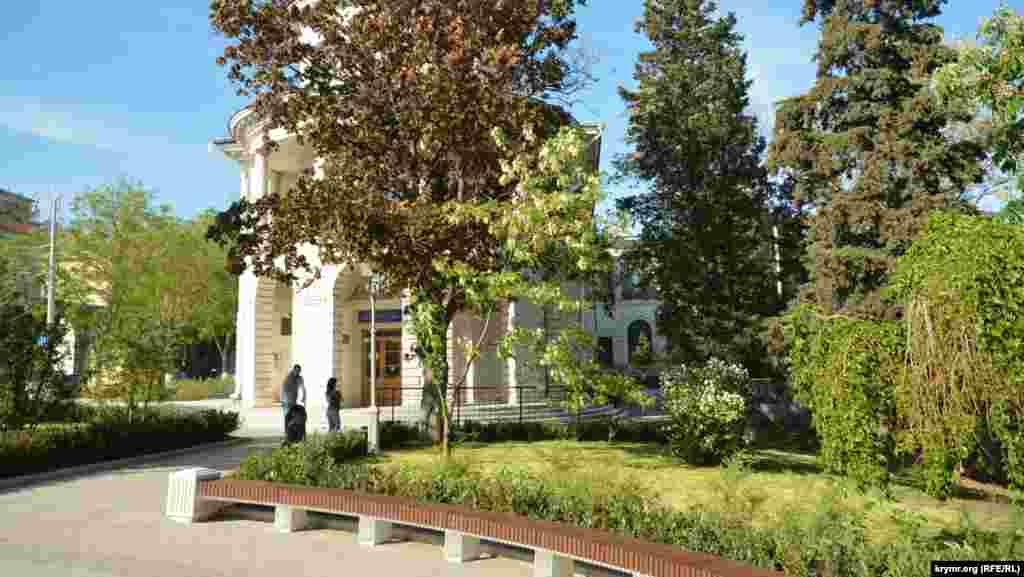 Молодая акация у здания Центральной городской библиотеки имени Льва Толстого