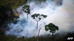 آتشسوزی در طبيعت در ماههای خشک پديدهای معمولی است ولی برخی از موارد عمدی و توسط مزرعهداران اتفاق میافتد که برای گسترش مراتع دامپروری به طور غيرقانونی جنگلها را از بين میبرند.