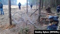 Жители Жуковского и экологи борются за Цаговский лес