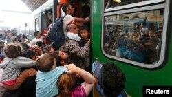Будапештнинг марказий вокзалида камида 2 минг муҳожир уч кундан бери қолиб кетган.
