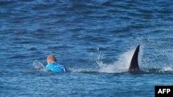 Мик Фанинг поначалу решил уплыть от акулы. 19 июля 2015 г.