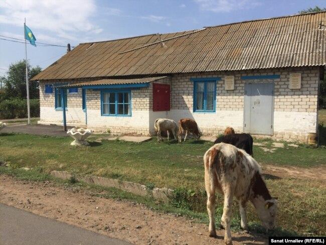 Круглоозерное ауылының әкімдігі. БҚО, 6 тамыз 2017 жыл