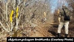 რუსეთის საოკუპაციო ძალების წარმომადგენელთა მიერ მონიშნული ხეები