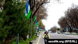 Проезжая часть одного из ташкентских проспектов. 21 марта 2013 года.
