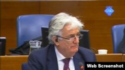 Radovan Karadzic in The Hague