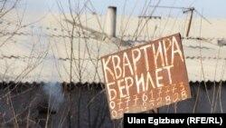 Жаңы конуштагы жарыя. Бишкек