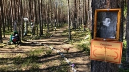 A portrait of a victim of Stalin's Great Terror is shown pinned to a tree at the Sandarmokh site.