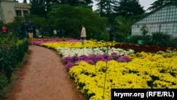 Архівне фото: «Бал хризантем», Нікітський ботанічний сад, Крим, 2015 рік