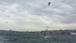 Gaçgak türkmen zähmet migrantlary deportasiýa ediler