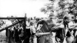 Este germanii care în 19 august 1989 au putut pleca din lagărul comunist în spațiul european: gardul care separa Ungaria de Austria lângă Sopron, fotografie făcută în urmă cu 30 de ani.