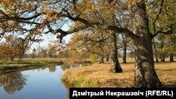 Рака Убарць. Маркоўскі, Лельчыцкі раён - аўтар Дзмітрый Некрашэвіч