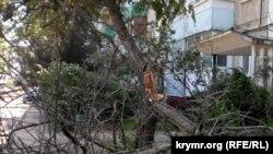 Последствия сильного ветра в Керчи, архивное фото