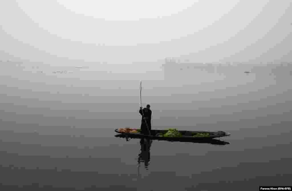 Лодачнік выцягвае водарасьці з возера ў індыйскай частцы Кашміру