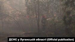 Синоптики попереджають про небезпеку лісових пожеж