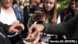 Prstenovanje ptica na Tari