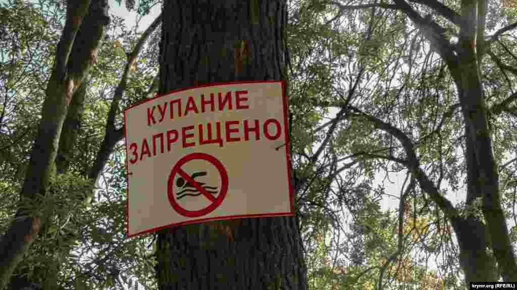 Таблички предупреждают, что купаться на когда-то самом популярном в городе пляже теперь запрещено