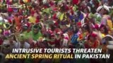 Intrusive Tourists Threaten Ancient Spring Ritual In Pakistan