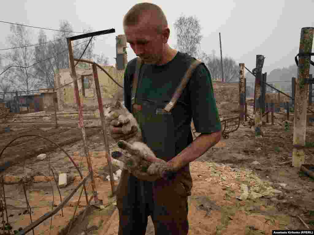 A cat injured in the fires returned after two days to the place where his home stood in Borkovka.