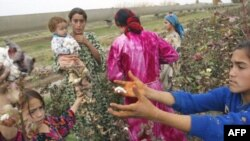 Child labor in the Tajik cotton industry may still exist despite recent legislation