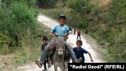 Tajik children riding a donkey.