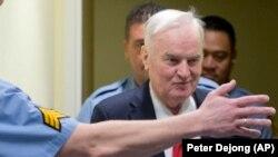 Suđenje Ratku Mladiću u Hagu