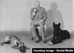 Доктор Писаржовиц и его любимые собаки