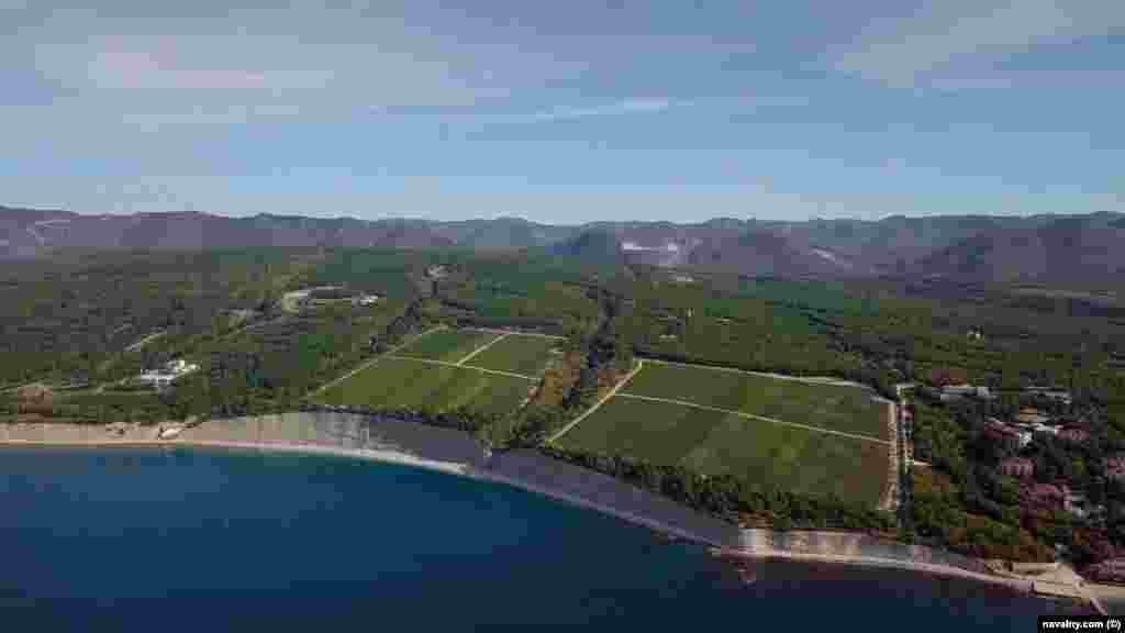 На виноробні ростуть величезні ряди виноградної лози. Замок можна побачити ліворуч на цьому зображенні. Як зазначає Навальний, вино з цього виноградника подають на багатьох офіційних закладах Кремля