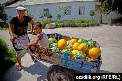 Жительница Джизакской области Насиба Юлдошева с детьми продает арбузы и дыни. Иллюстративное фото.