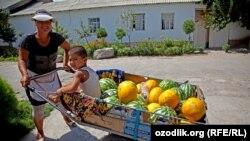 Жительница Джизакской области Насиба Юлдошева с детьми продает арбузы и дыни. Иллюстративное фото