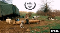 RFE/RL's Anastasia Slovinskaya's video Goran's Rules Of Life won Best Web Video at the 2018 ADAMI Media Prize for Cultural Diversity in Eastern Europe.