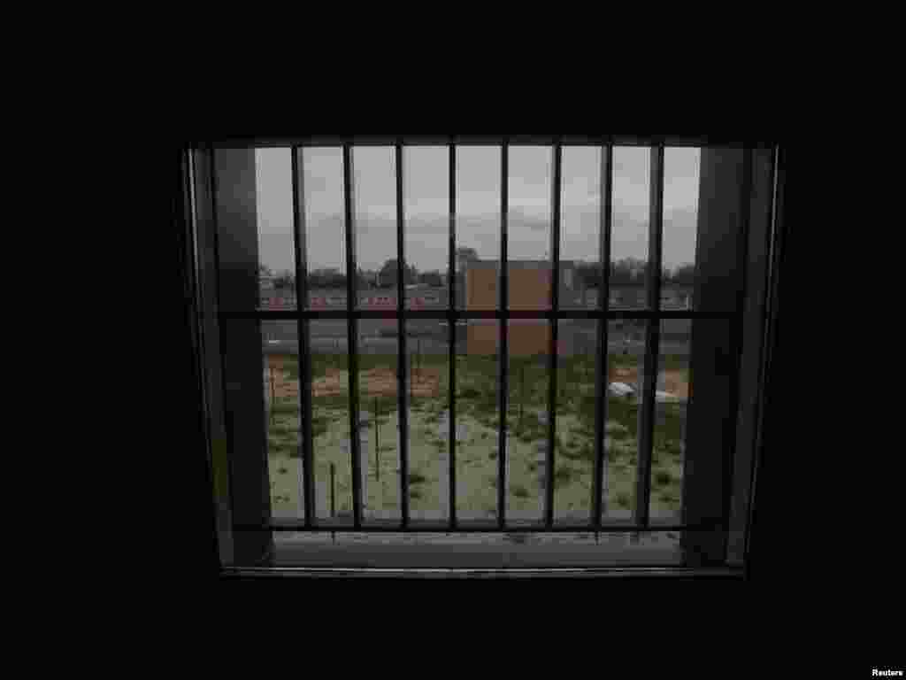 The view from inside a cell