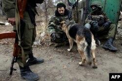 Українські військовослужбовці із вівчаркою біля селища Піски. Листопад 2014 року