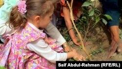 طفلة تشارك في زراعة نبتة ضمن مهرجان في الكوت