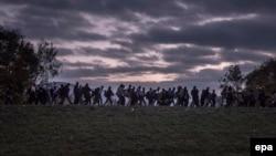 Izbjeglice, 2016.