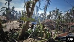Повалені дерева і знищені будинки у центральній частині Філіппін, 8 грудня 2014 року