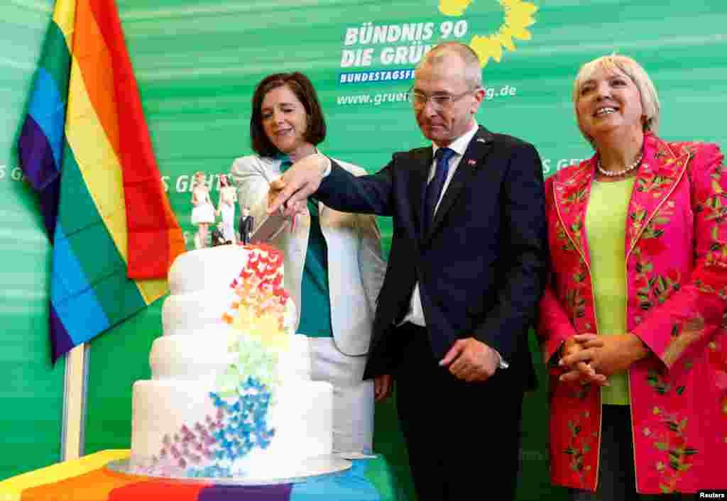 Представители Партии Зеленых отпраздновали принятие закона об однополых браках тортом