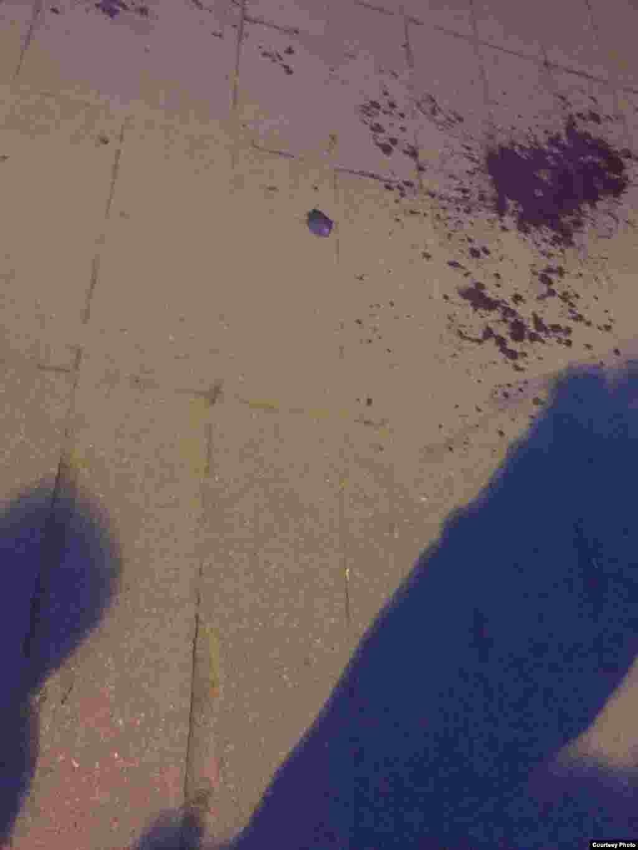 Аскепак і кроў нанабярэжнай Сьвічлачы побач саспарткомплексам«Дынама», дзе адраненьне падчас салюту загінула жанчына