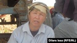Айгуль Барболова, фермер из села Алгабас. Южно-Казахстанская область, 17 сентября 2015 года.