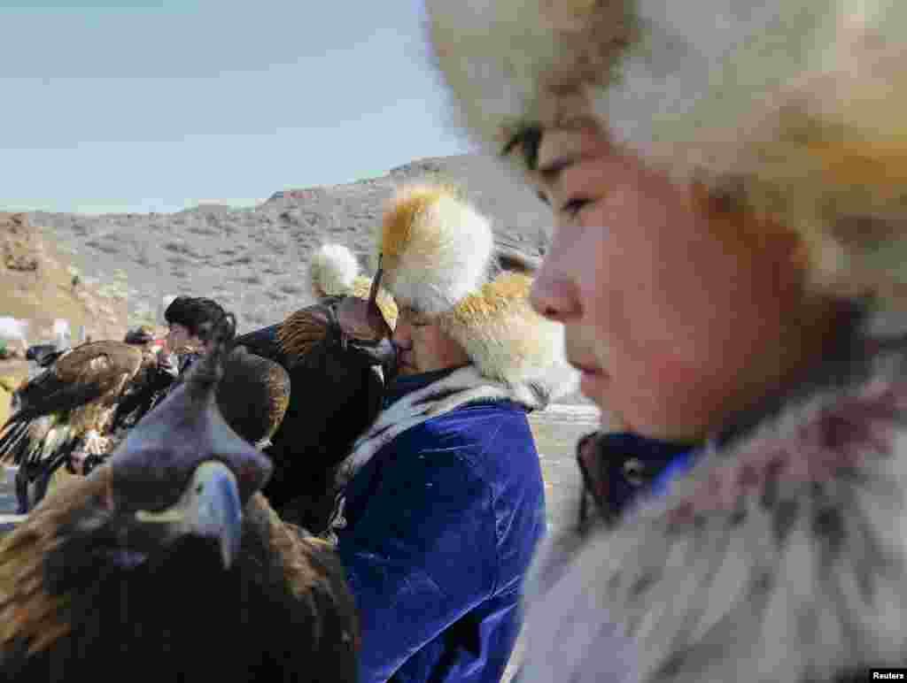 Охотники используют клобучки, или томага, - колпак на голову птицы. Он надевается на голову ловчей птицы, чтобы она не отвлекалась на окружающие предметы до состязаний и в перерывах между этапами.