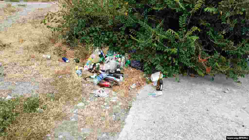 Из-за отсутствия урн образовываются стихийные кучи мусора